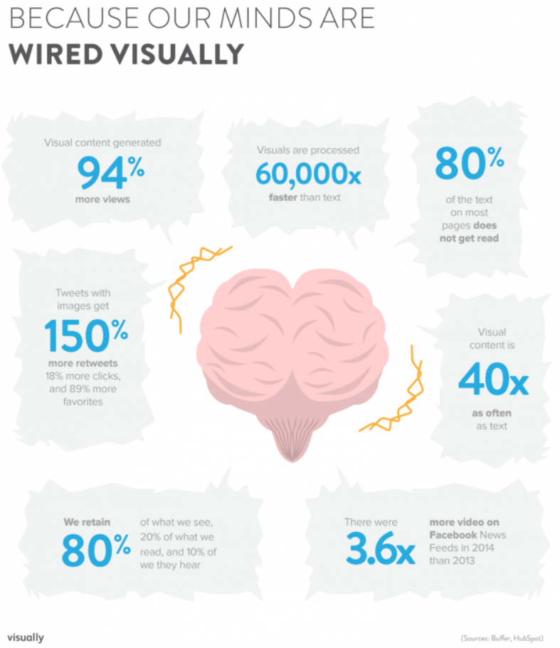 how our minds are wired visually